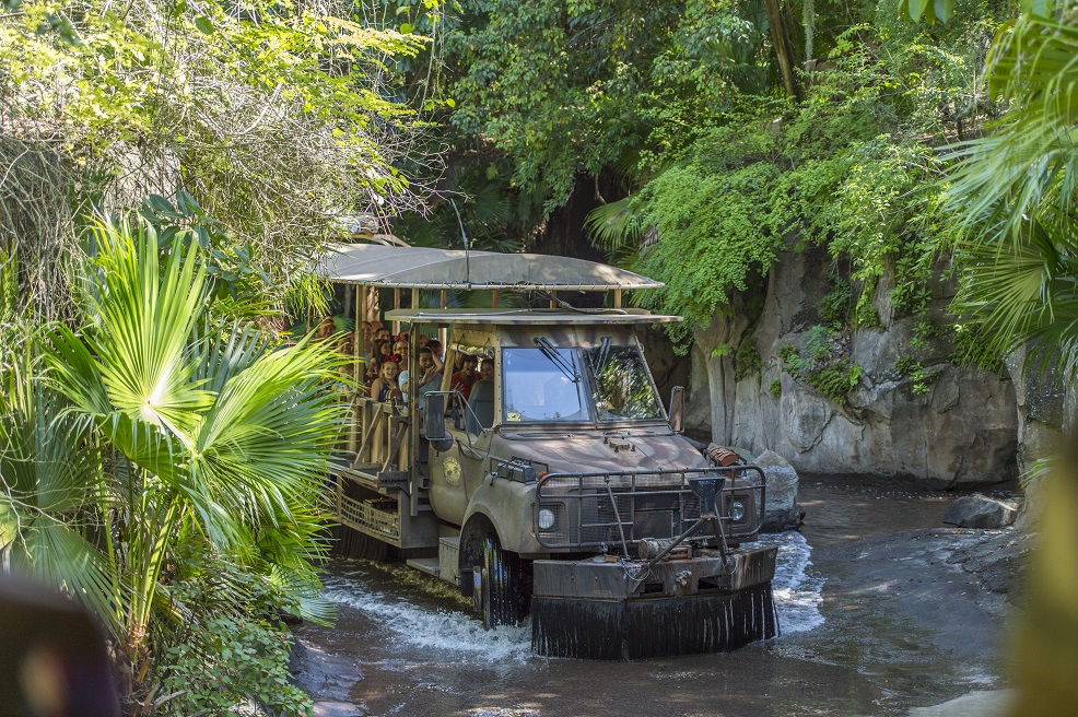 Disney Animal Kingdom safari